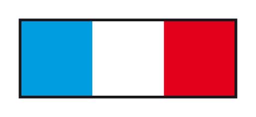 drapeau20francais.jpg