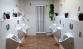 Comment nettoyer des WC